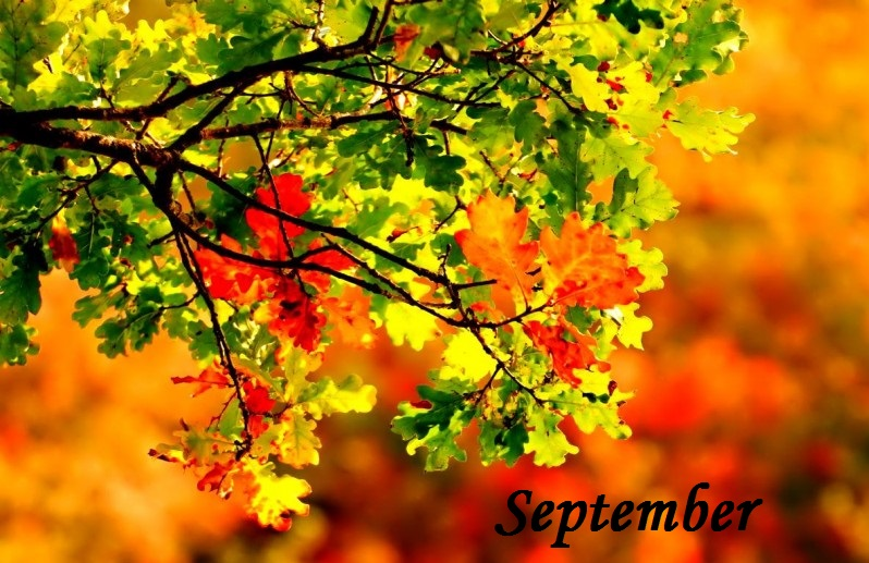 September v MŠ