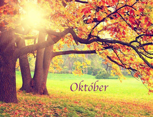 Október v MŠ