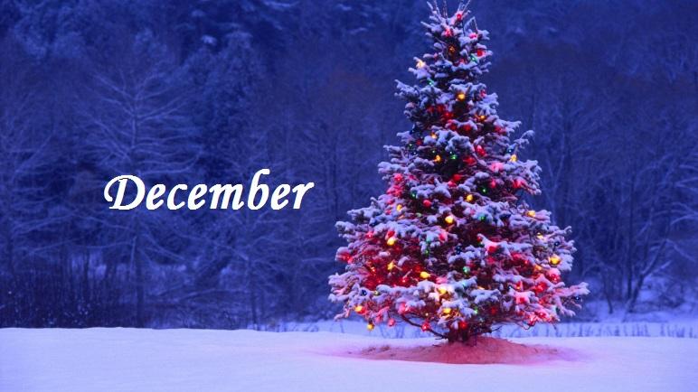 December v MŠ