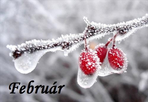 Február v MŠ